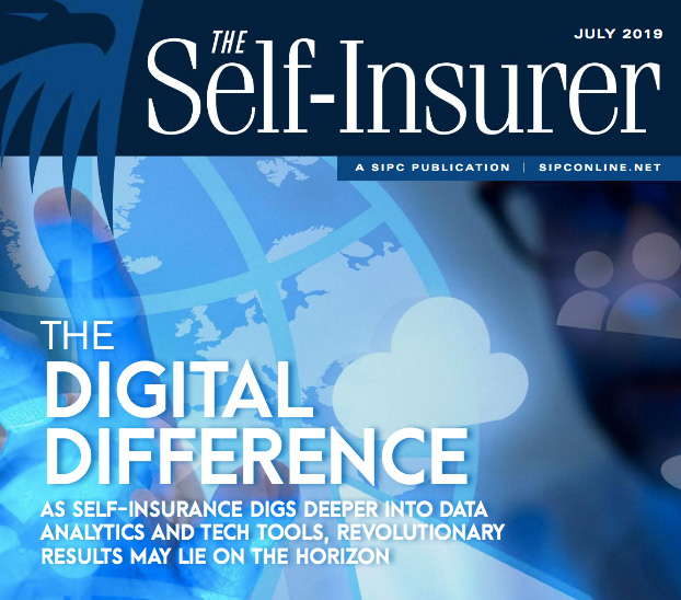 Issue-of-the-Self-Insurer